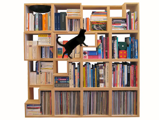 Bookcase With Steps For Cats To Climb